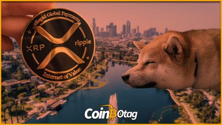 ripple doge