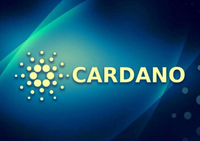 CARDANO-08-forest