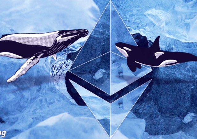 balina-freshblue