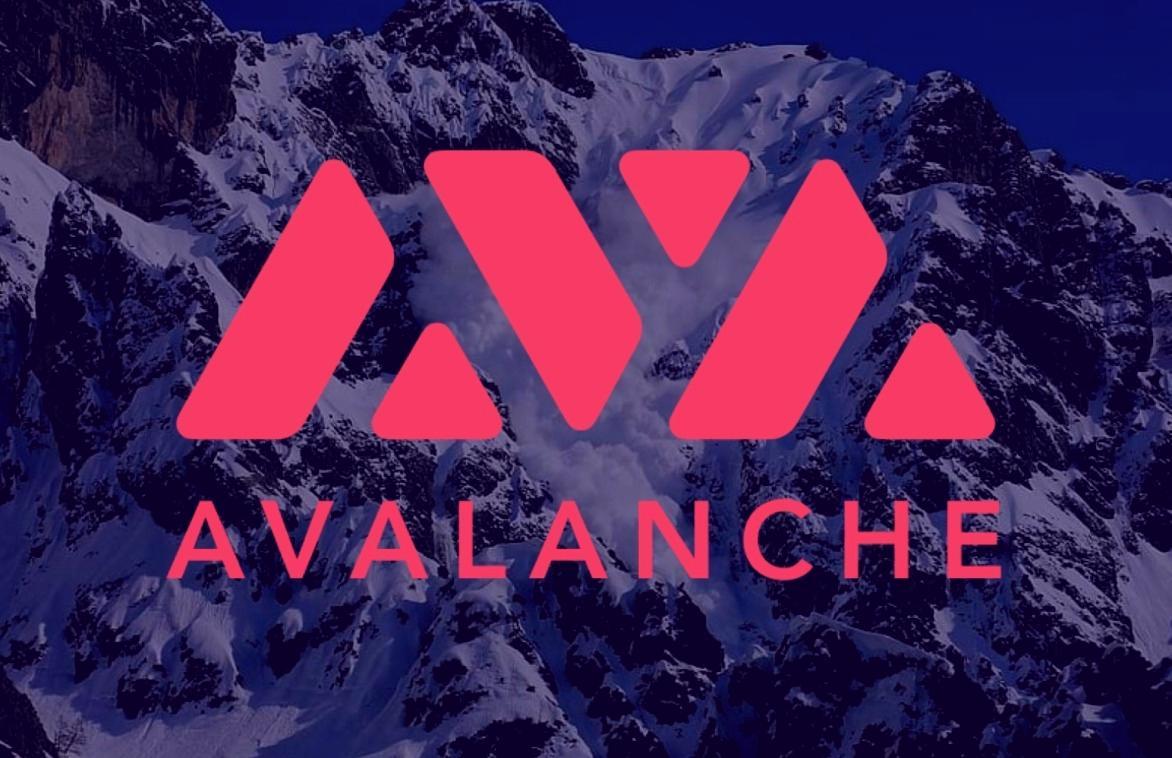 Avax-1-freshblue