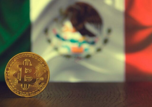 bitcoin-meksika-forest
